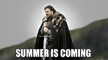 Summer is Coming Ned Stark