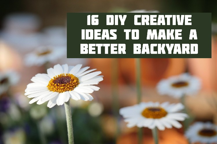 16 DIY Creative Ideas to Make a Better Backyard