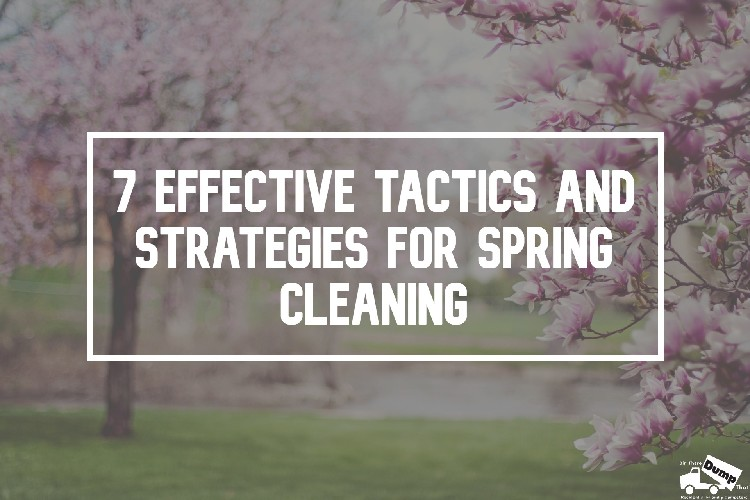effective strategies and tactics for spring clean